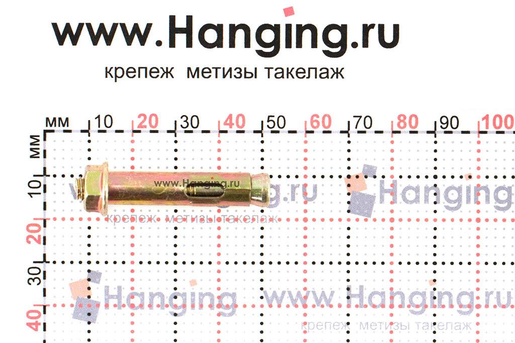 Размеры анкерного болта с гайкой М6 8х40