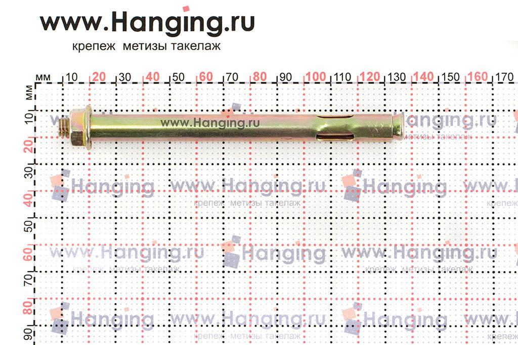 Размеры анкерного болта с гайкой М8/10х125