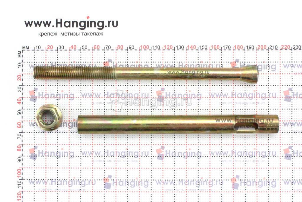 Составные части анкерного болта с гайкой М12 16х180