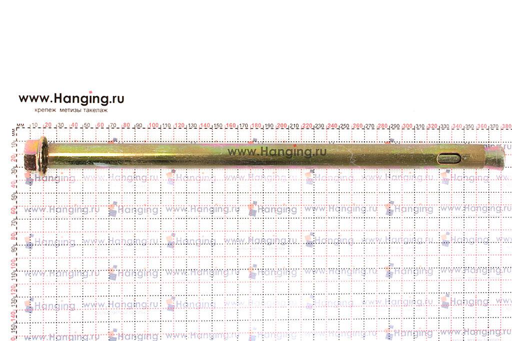 Размеры анкерного болта с гайкой 20х350 М16