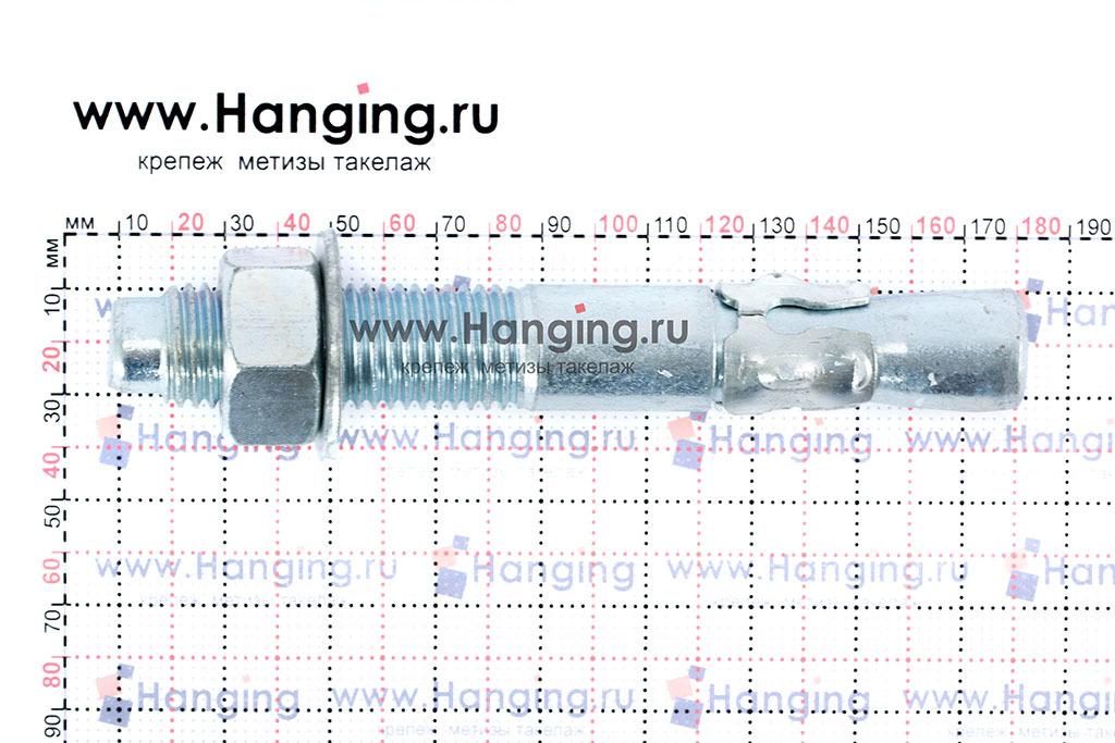 Размеры анкеров оцинкованных клиновых М24x170