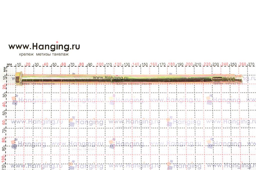 Размеры анкерного болта с гайкой 10х250 М8