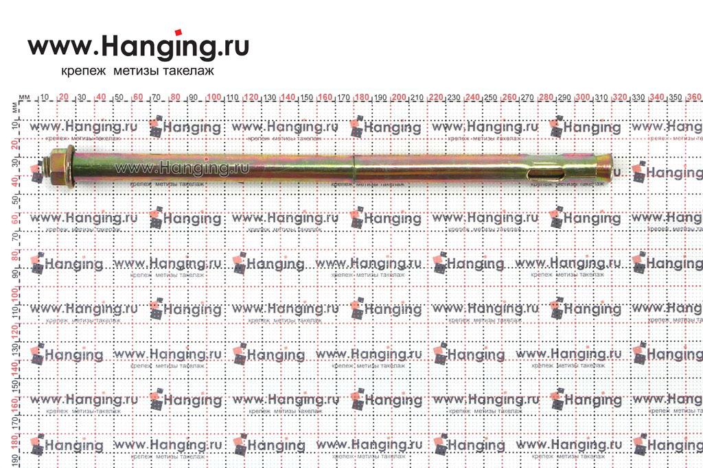 Размеры анкерного болта с гайкой М12/16х300
