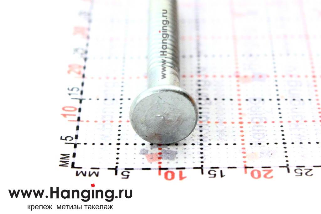 Шляпка (головка) ершенного оцинкованного гвоздя 4х40