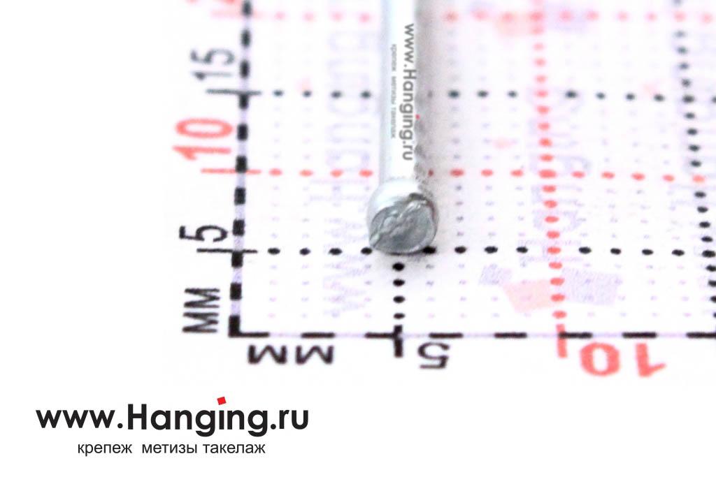 Шляпка (головка) гвоздя финишного оцинкованного 1,6х20 DIN 1152