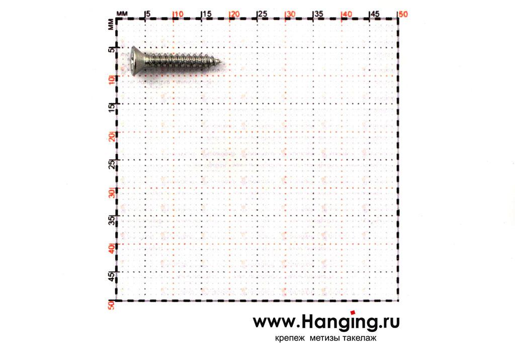 Размеры самореза 2,9х16 с потайной головкой и крестовым шлицем нержавеющего А4 DIN 7982