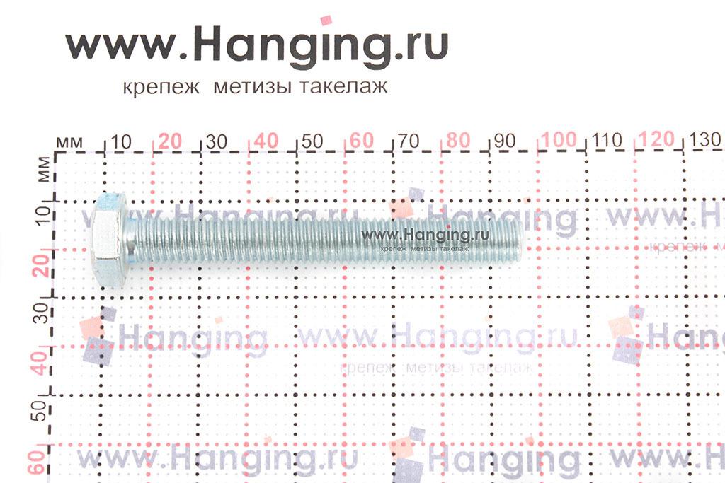 Размеры оцинкованного болт 10х80 с полной резьбой 8.8