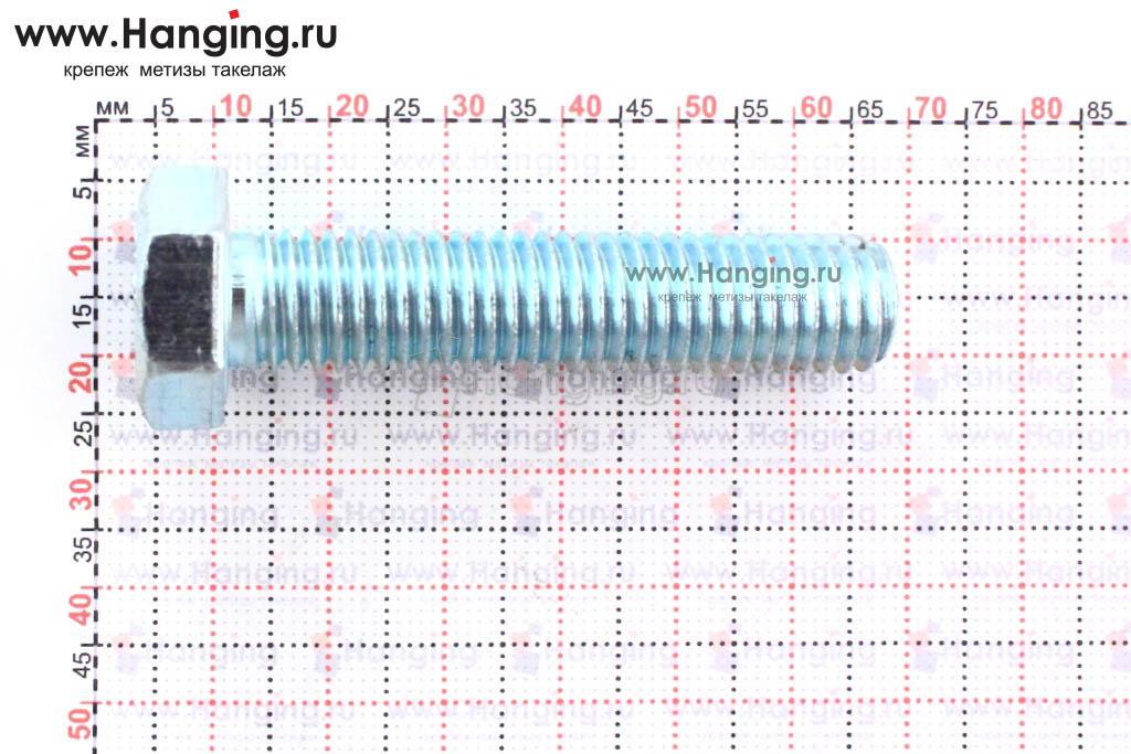 Размеры оцинкованного болт 12х55 с полной резьбой 8.8