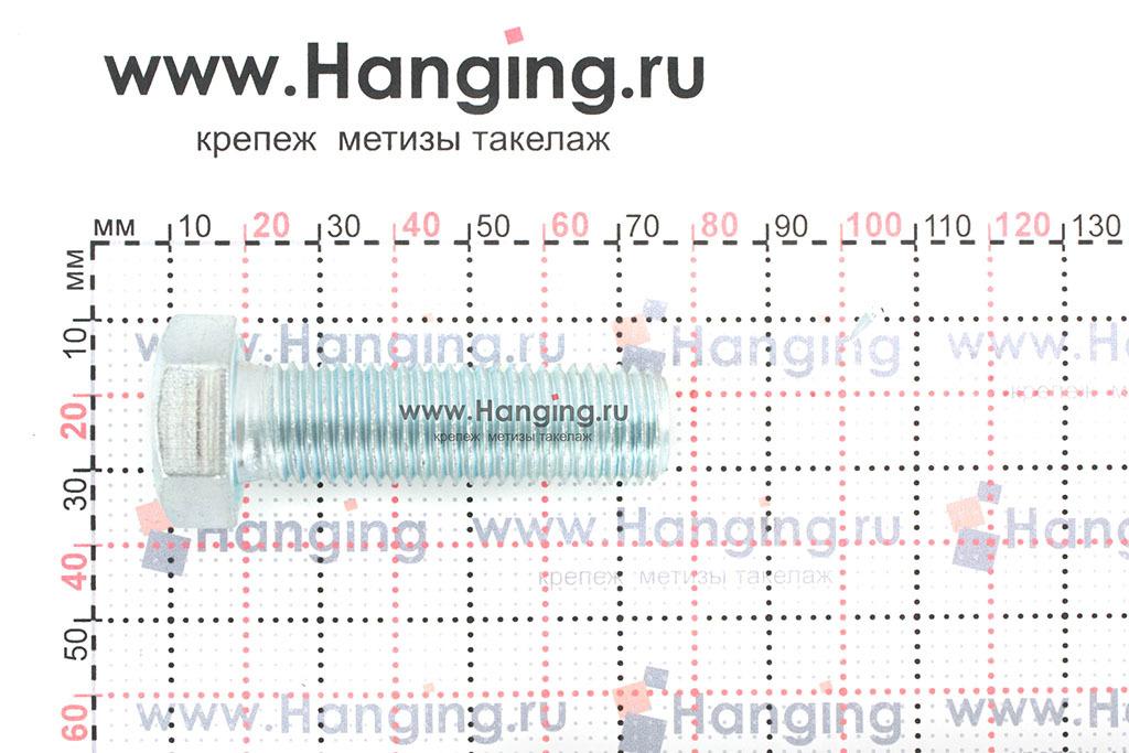 Размеры оцинкованного болт 16х55 с полной резьбой 8.8