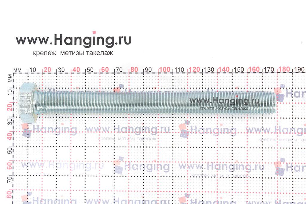 Размеры оцинкованного болт 16х160 с полной резьбой 8.8