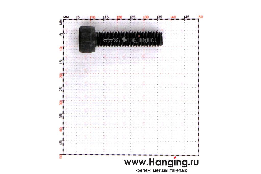 Размеры болта М6х25 с внутренним шестигранником, без покрытия, кл. пр. 10.9, DIN 912