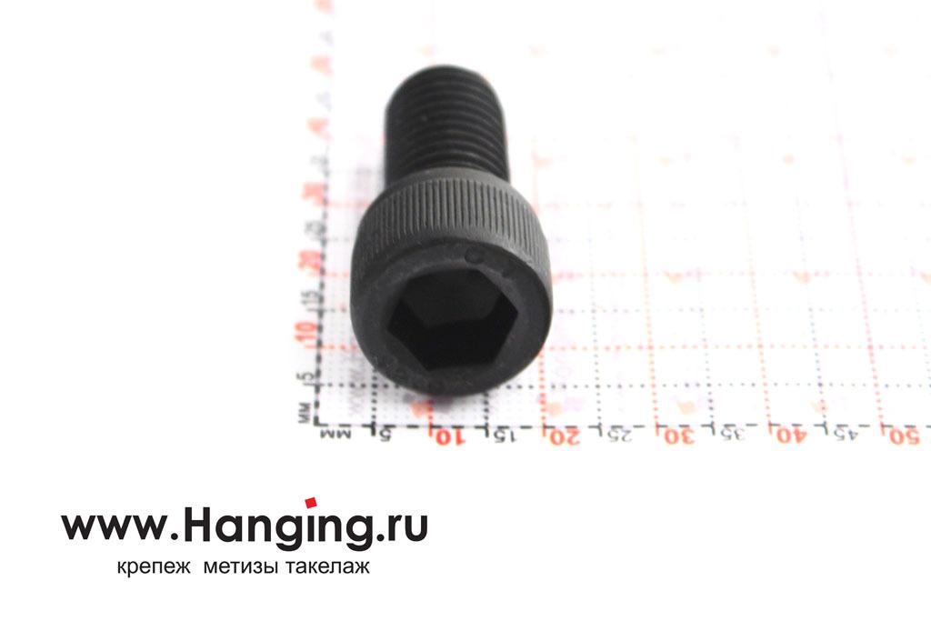 Головка винта М12х25 с внутренним шестигранником, без покрытия, класс прочности 12.9, DIN 912