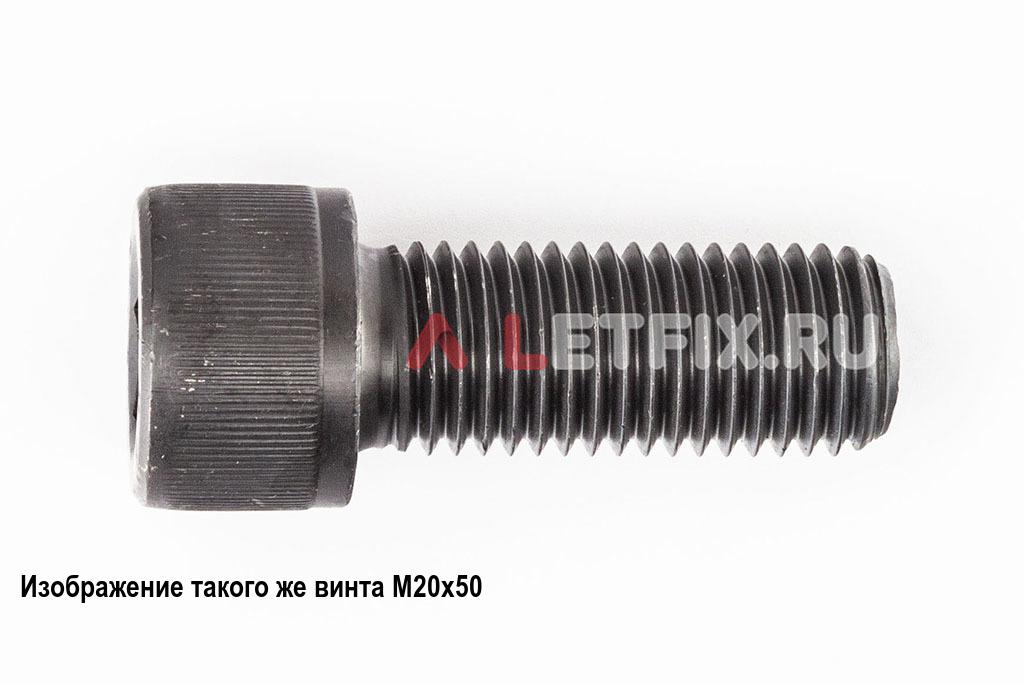 Винт М20х55 с внутренним шестигранником, без покрытия, кл. пр. 12.9, DIN 912