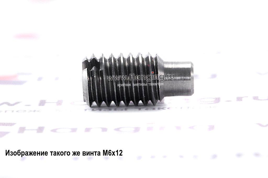 Винт установочный М4х6 с прямым шлицем и цилиндрическим концом неоцинкованный DIN 417