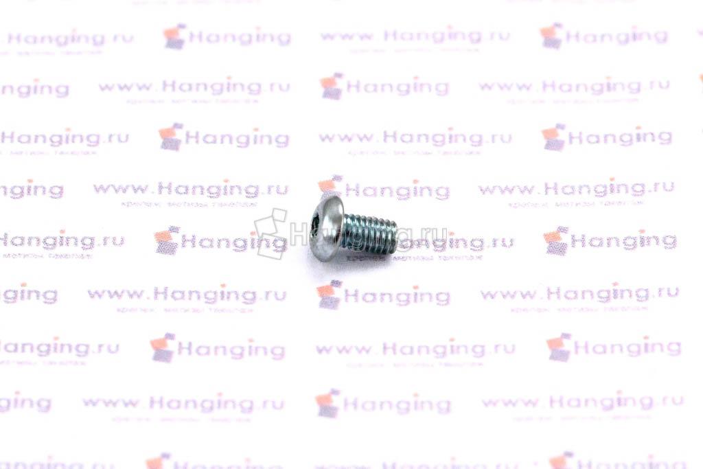 Винт ISO 7380 М3х6
