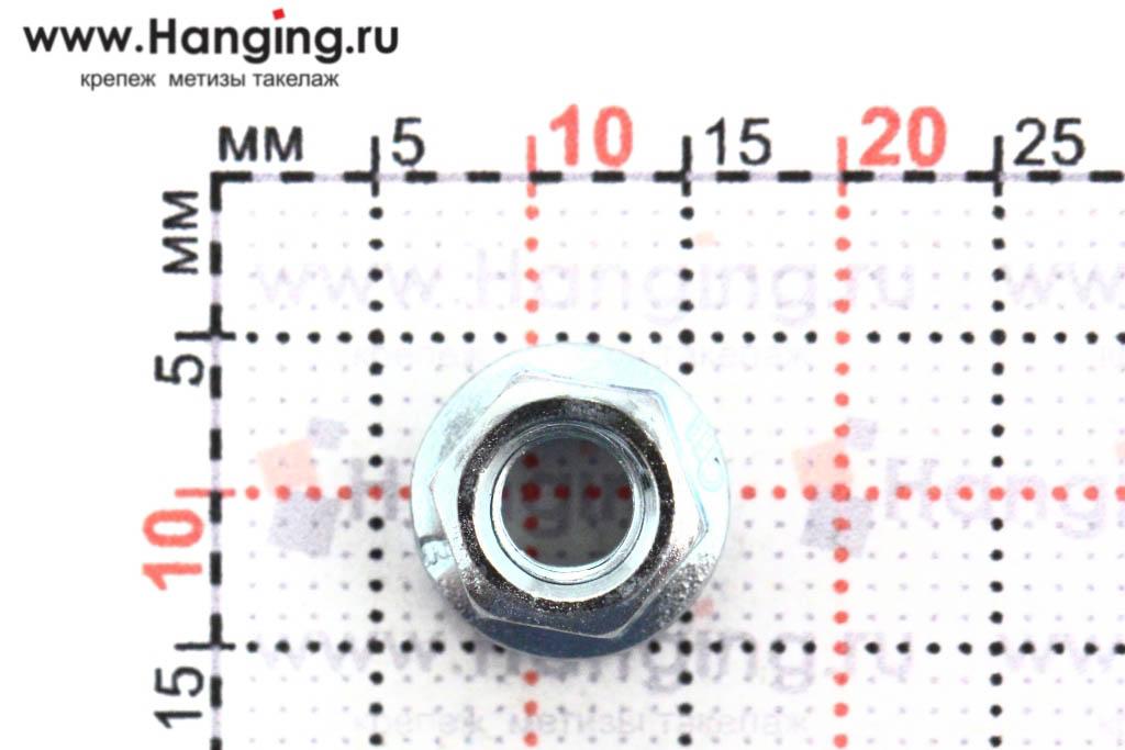 Размеры фланцевой гайки М4 цинк