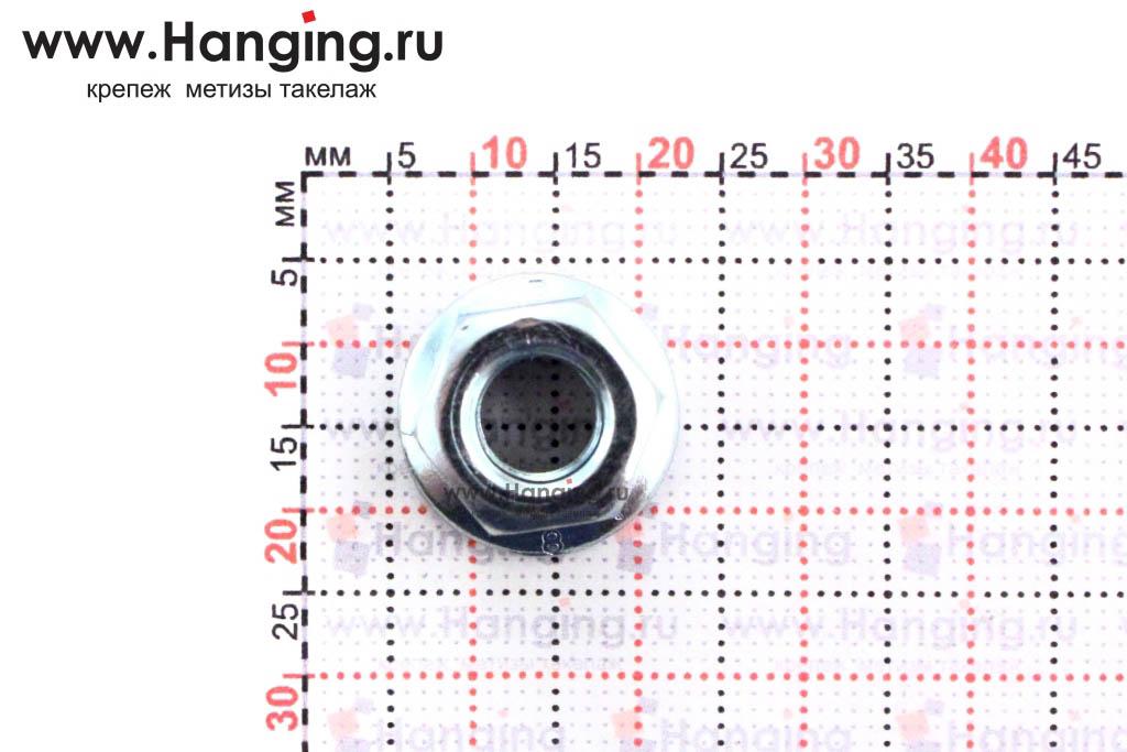 Размеры фланцевой гайки М8 цинк