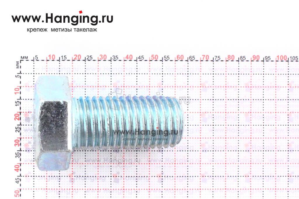 Размер резьбы оцинкованного болта с полной резьбой М20*40
