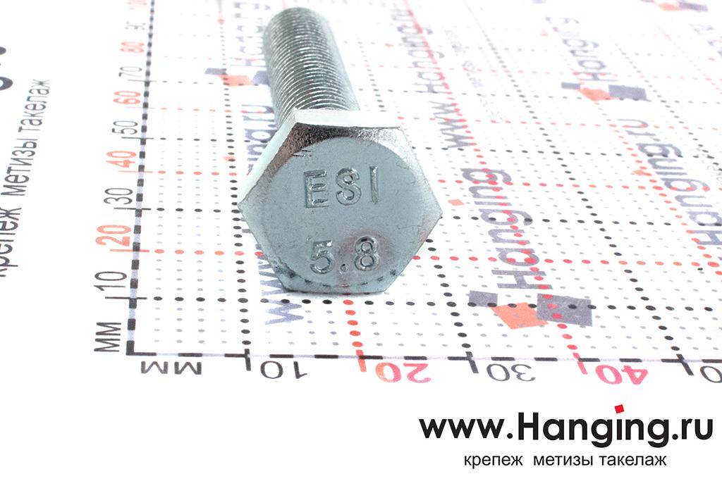 Размеры головки болта М10х60 с полной резьбой цинк DIN 933