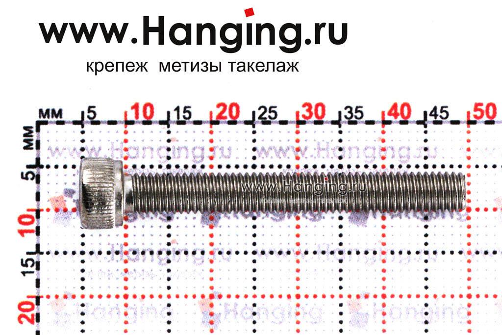 Размеры болта М5х40 DIN 912